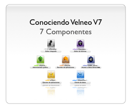 Conociendo Velneo V7 - 7 componentes 1