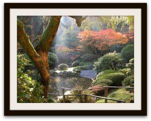 jardin-japones-parte-2